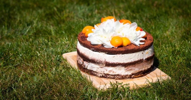 Meruňkový dort sčokoládovým korpusem